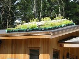 Rooftop Garden Ideas The Ground Levels Rooftop Gardens Reverse To High Density
