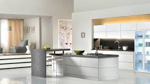 kitchen modern european kitchen cabinets professional kitchen