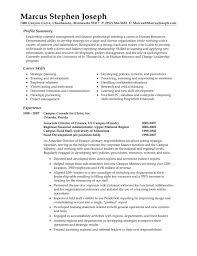 Summary Sample Resume by Download Resume Professional Summary Haadyaooverbayresort Com