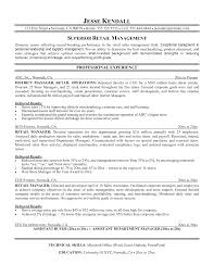 objectives for resume samples   Www qhtypm
