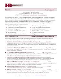 Director Of It Resume Examples by Click Here To Download This Human Resources Professional Resume