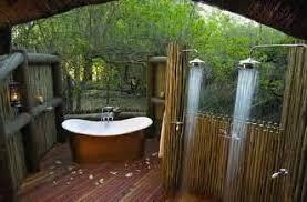 Modern Japanese Bathroom Design Indoor Plants In Pots Decorations - Japanese bathroom design