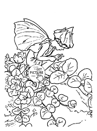 flower fairy herb twopence coloring page for kids for girls