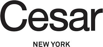 Kitchen Cabinet Logo Cesar New York Modern European Kitchen Design Nyc