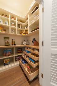 Kitchen Pantry Shelving Ideas by Best 10 Built In Pantry Ideas On Pinterest Traditional Pantry