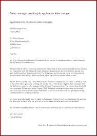 Sales Application Letter Sample   sendletters info   Application Letter