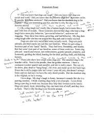 Transfer Essay Examples   Kibin thatnut us   Worksheet Collection