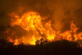 Willow Wildfire California at least 1 dead as explosive wildfires burn in california wine