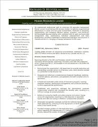 Resume Sample For Human Resource Position by Best 25 Executive Resume Template Ideas Only On Pinterest