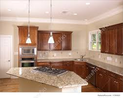 Stove In Kitchen Island Picture Of Luxury Kitchen With Island Stove