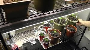indoor gardening grow room tour youtube