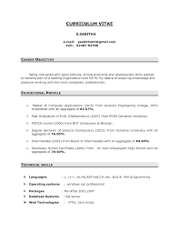 resume summary example for freshers   Template   resume summary examples for students happytom co