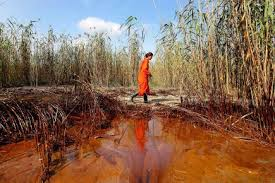 Des Médias silencieux quant à la catastrophe du Golfe du Méxique Images?q=tbn:ANd9GcSK_obPCkfXtsg-4US4g3iFKCRO6wNUTLSid9ANQ9UKHhvo6sbWaA