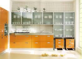 Cabinet Brilliant Glass Kitchen Cabinet Doors Design Buy Glass - Kitchen cabinet with glass doors