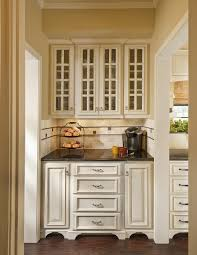 Kitchen Cabinet Glass Glass Panel Doors Magnificent Home Design