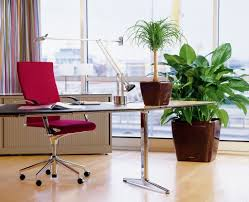 Office Desk Plants by Upgrade Your Home Office To Enjoyable Working Space