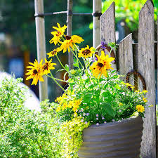 beautiful container gardening ideas inspired home life