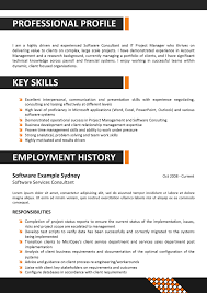 Teamwork Resume Sample by Professional Resume Template