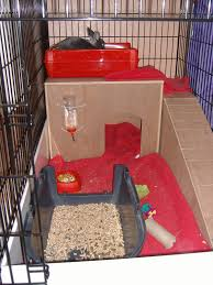 indoor rabbit hutches page 2 pet forums community