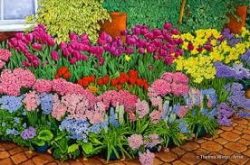 winter gallery artist thelma winter botanical gardens flower