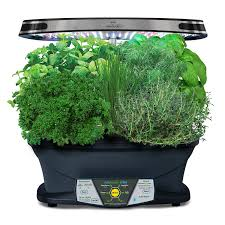 amazon com aerogarden extra led with gourmet herb seed pod kit