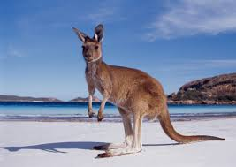 Naturalize oneself in Australia