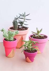 Succulents Pots For Sale by 25 Diy Painted Flower Pot Ideas You U0027ll Love