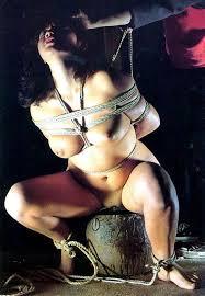 江戸時代女囚緊縛 折檻 拷問|女囚幻想のこと