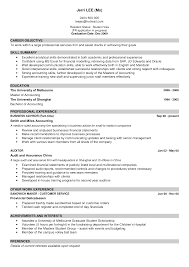 Cv work experience example   Agenda Template Website