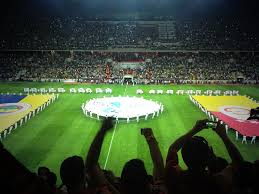 2013 Turkish Super Cup