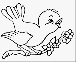great angry birds printable coloring pages for kids with birds