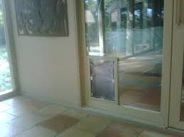 cat door in glass choice image glass door interior doors