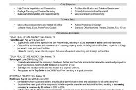 Financial Planner Resume Sample by Real Estate Loan Officer Resume Reentrycorps