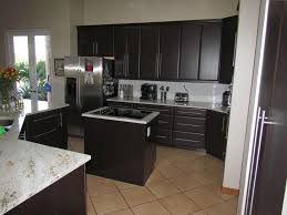 furniture traditional kitchen design with kitchen cabinet