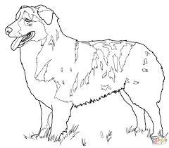 fascinating ideas of beautiful german shepherd puppies throughout