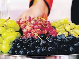 поздние сорта винограда