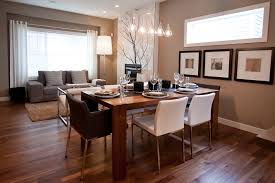 Light Over Dining Room Table - Pendant light for dining room
