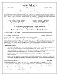 Sales Manager Resume Objective Sales Manager Resume Account         Sales Manager Resume Objective