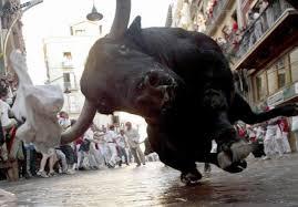 Oh Bull Shot!
