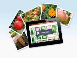 Home Layout Software Ipad Garden Plan Pro The Leading Garden Planner App For Ipad And Iphone