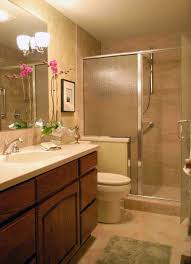 walk in showers for small bathrooms bathroom decor