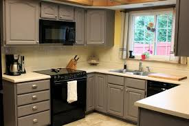 Charming Design What Color Should I Paint My Kitchen Cabinets Cosy - Good color for kitchen cabinets
