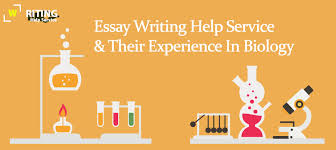 essay writing help service FAMU Online