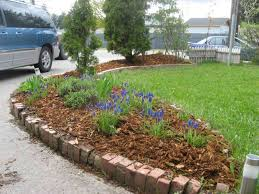 ideas beginners landscape ideas designs for beginners with elegant