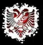shqiponja foto