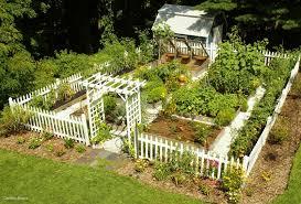 companion vegetable garden layout vegetable garden layout designs elegant vegetable garden layout