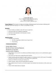 Sample Resume In Word  sample resume examples samples free sample     Play Zone eu curriculum vitae cv example curriculum vitae examples for doctorsg
