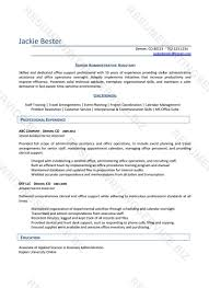 Nj resume help   Custom professional written essay service      Sample Resume  Professional Resume Writers Customer Service With Profile Of Qualifications Feat Career Background And