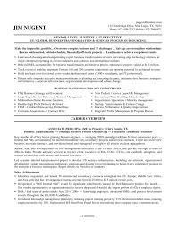 Business Operations Executive Resume CEO Resum resume format for