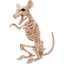 halloween skeletons decorations crazybonez skeleton rat halloween decoration walmart com